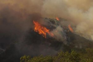 Southern California Wildfire Threatens Structures, Forces Evacuations